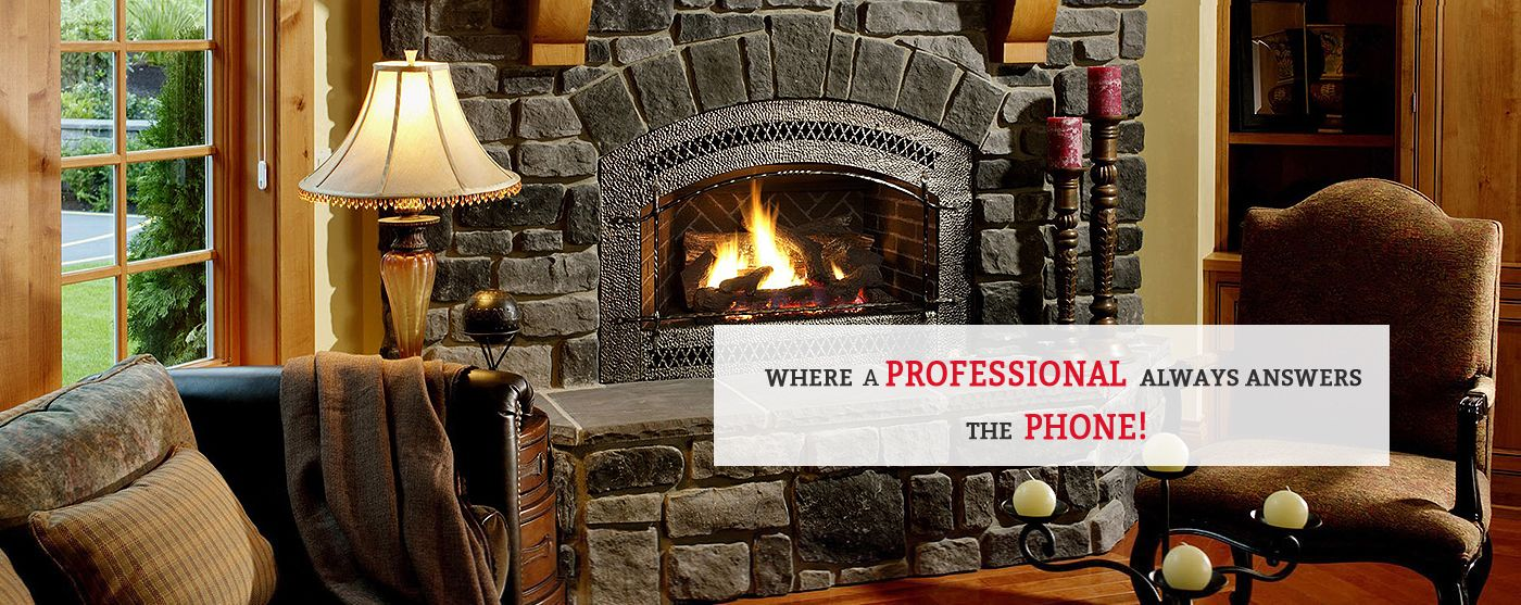 Chimney Sweep Minneapolis | The Chimney Pro